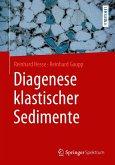 Diagenese klastischer Sedimente (eBook, PDF)