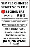 Simple Chinese Sentences for Beginners (Part 3): Reading Comprehension Guide, Learn Essential Mandarin Chinese Phrases, Idioms, and Meanings (Simplified Characters, Pinyin & English) (eBook, ePUB)
