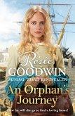 An Orphan's Journey (eBook, ePUB)