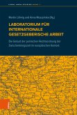 Laboratorium für internationale gesetzgeberische Arbeit (eBook, PDF)