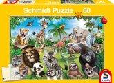Animal Club, Wildtiere (Puzzle)