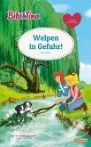 Bibi & Tina - Welpen in Gefahr! (eBook, ePUB)