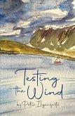 Testing the Wind (eBook, ePUB)