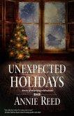Unexpected Holidays (eBook, ePUB)