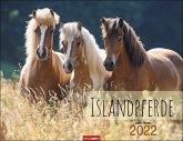 Islandpferde - Kalender 2022