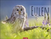 Eulen Kalender 2022