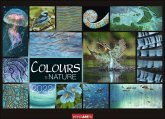 Colours of Nature Kalender 2022
