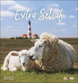 Extra Schaf 2022 - Postkartenkalender