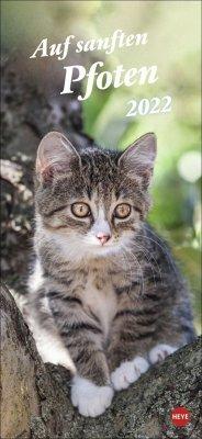 Katzen slim - Auf sanften Pfoten Kalender 2022