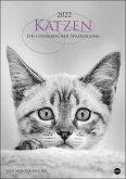 Katzen - Ein literarischer Spaziergang 2022