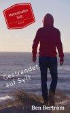 Gestrandet auf Sylt (eBook, ePUB)