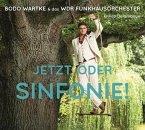 Jetzt oder Sinfonie !, 1 Audio-CD