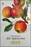 Alte Apfelsorten 2022 - Bild-Kalender 33x49,5 - Küchen-Kalender - gesunde Ernährung - Wand-Kalender