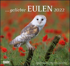 Geliebte Eulen 2022 - DuMont Wandkalender