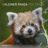 Kleiner Panda 2022 - Broschürenkalender 30x30 cm (30x60 geöffnet)