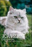 Stefan Heine Katzen Quizkalender 2022 Wochenkalender - 23,7x34