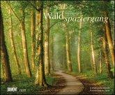 Waldspaziergang 2022 - Fotokunst-Kalender - Querformat 58,4 x 48,5 cm - Spiralbindung