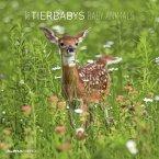 Tierbabys 2022 - Broschürenkalender 30x30 cm