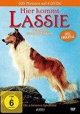 Hier kommt Lassie - Die gross Sammel-Edition, 4 DVD