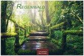 Regenwald 2022 - Format L