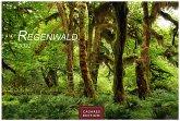 Regenwald 2022 - Format S