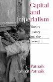 Capital and Imperialism (eBook, ePUB)