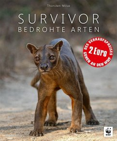 Survivor - Milse, Thorsten