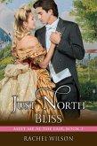 Just North of Bliss (Meet Me at the Fair, Book (eBook, ePUB)