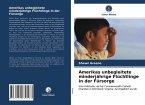 Amerikas unbegleitete minderjährige Flüchtlinge in der Fürsorge