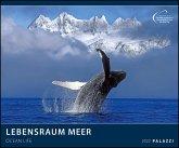 Lebensraum Meer 2022 - Bild-Kalender - Poster-Kalender - 60x50