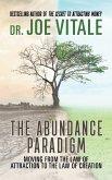 The Abundance Paradigm (eBook, ePUB)