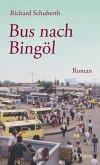 Bus nach Bingöl (eBook, ePUB)