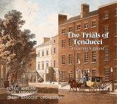 The Trials Of Tenducci-A Castrato In Ireland