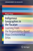 Indigenous Geographies in the Yucatan (eBook, PDF)