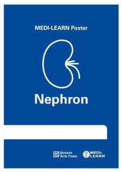 Nephron-Poster - Bormann, Thomas