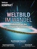 Spektrum Kompakt - Weltbild im Wandel (eBook, PDF)