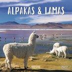 Alpakas und Lamas 2022
