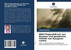 DNA-Fingerabdruck von Bäumen und genetische Vielfalt von Syzygium cumini