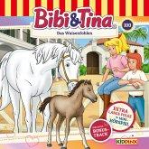 Bibi & Tina - Folge 100: Das Waisenfohlen (Extra lange Folge) (MP3-Download)