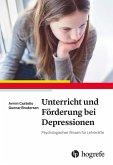 Unterricht und Förderung bei Depressionen (eBook, ePUB)