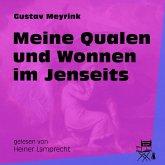 Meine Qualen und Wonnen im Jenseits (Ungekürzt) (MP3-Download)