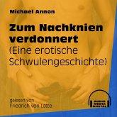 Zum Nachknien verdonnert - Eine erotische Schwulengeschichte (Ungekürzt) (MP3-Download)