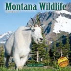 2022 Montana Wildlife Wall Calendar