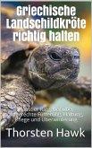 Griechische Landschildkröte richtig halten (eBook, ePUB)