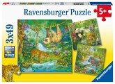 Im Urwald (Kinderpuzzle)
