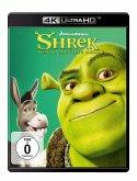Shrek-Der tollkühne Held