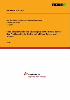 Food Security and Food Sovereignty in the Global South. Key Problematics in the Pursuit of Food Sovereignty Visions (eBook, PDF)