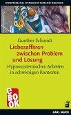 Liebesaffären zwischen Problem und Lösung (eBook, ePUB)
