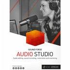 Magix Sound Forge Audio Studio 15 (Download für Windows)