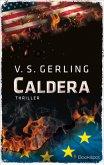 Caldera (eBook, ePUB)